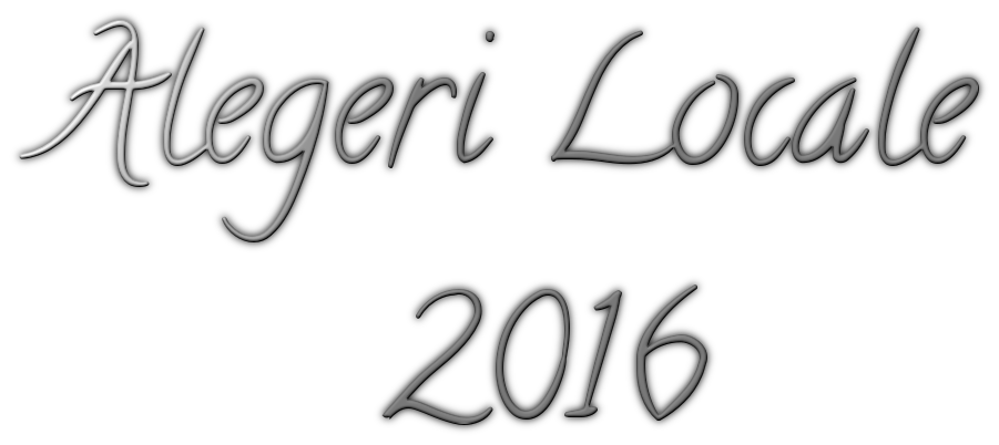 alegeri-locale-2016
